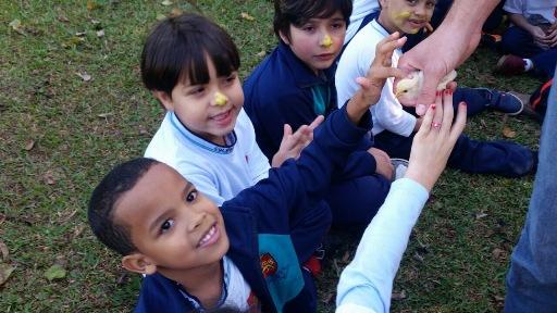 """Educação Infantil e 1º ano  visitam  """"FAZENDA  MÃE TERRA"""