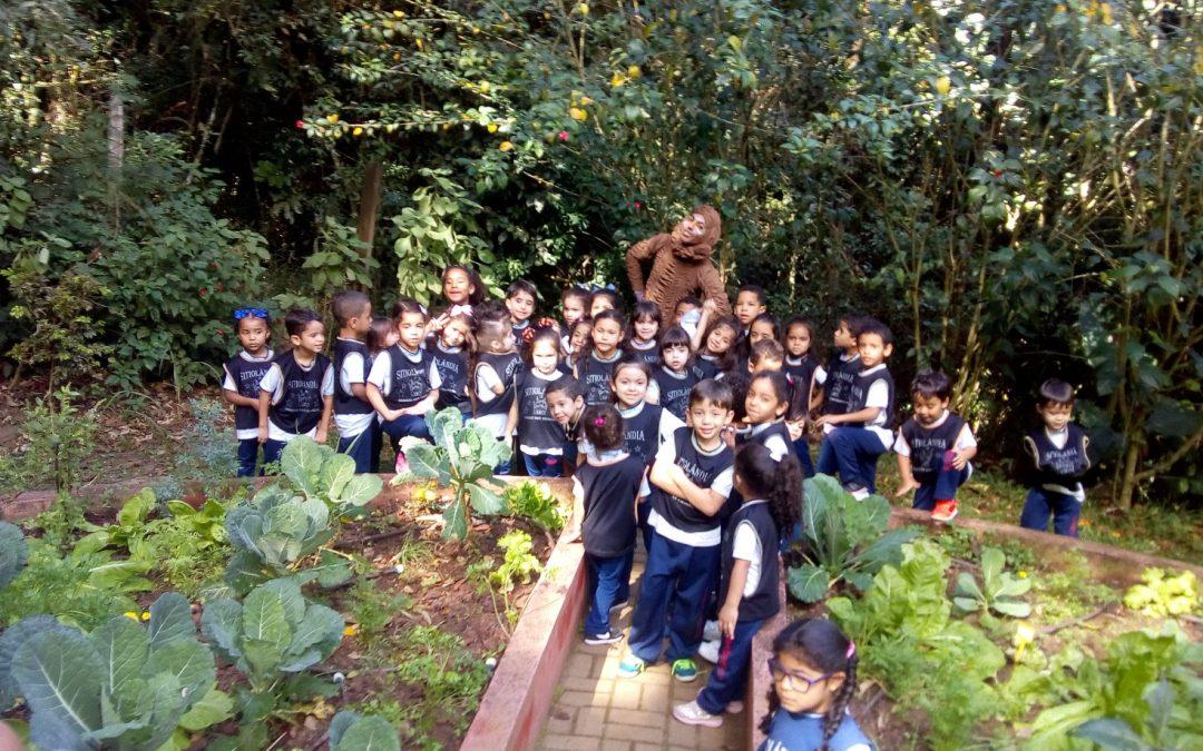 Educação Infantil ao 2º ano visitam  o Parque Ecológico   Sitiolândia